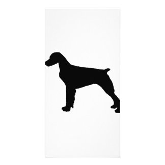 Brittany Spaniel sporting hunting dog Silhouette Photo Card Template