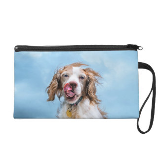 Brittany With Attitude Clutch Purse Wristlets