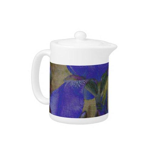 Broc de jardin d'iris