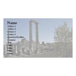 Broken Ruins Of Greek Style Pack Of Standard Business Cards