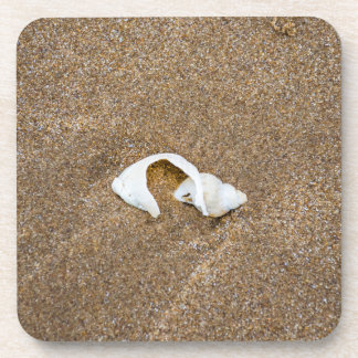 Broken shell hard plastic coasters