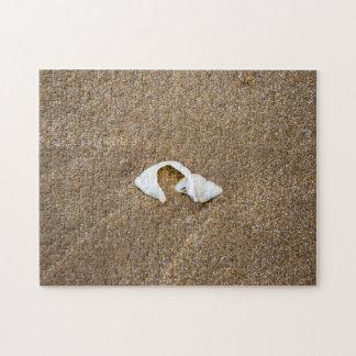 Broken shell photo puzzle