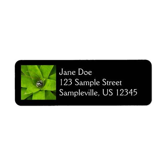 Bromeliad Green Nature Botanical Photography Return Address Label