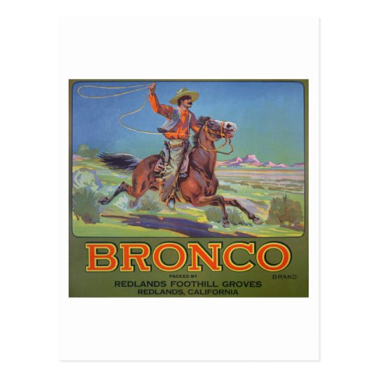 'Bronco Oranges', c.1900 (colour litho) Postcard