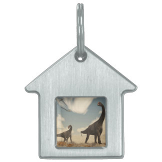 Brontomerus dinosaurs in the desert - 3D render Pet ID Tag