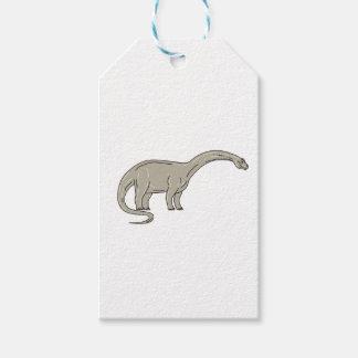 Brontosaurus Dinosaur Looking Down Mono Line Gift Tags