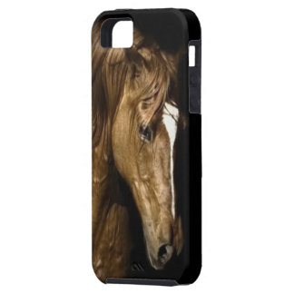 Bronze Horse - iPhone 5/5S, Vibe iPhone 5 Case