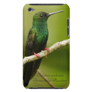 Bronze-tailed Plumeleteer iPod Case-Mate Case