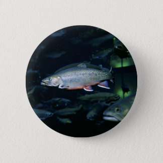 Brook trout 2 inch round button