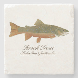 Brook Trout Coaster
