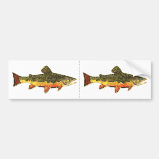 Brook Trout Fish Painting Bumper Sticker
