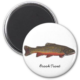 Brook Trout Magnet