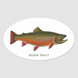 Brook Trout Male (Spawning Phase) Oval Sticker