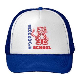Brookdale School Mesh Hats