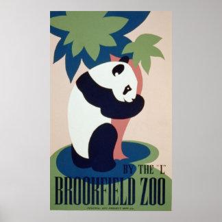 Brookfield Zoo Panad Poster