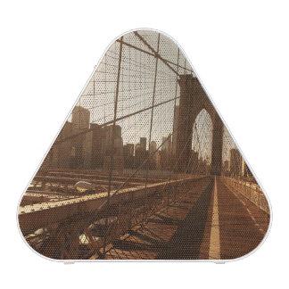 Brooklyn Bridge. Blueooth Speaker