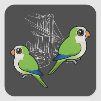 Brooklyn Monk Parakeets Square Sticker