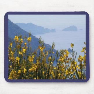 Broom on Cinque Terre coast Mouse Pad