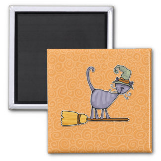 broomstick kitty magnet