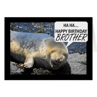 Brother Birthday card with laughing seal pup