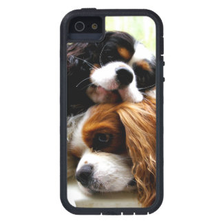 Brothers Cavaliers iPhone 5/5S Case