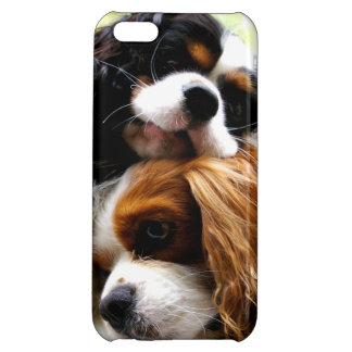 Brothers Cavaliers iPhone 5C Case