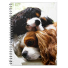Brothers Cavaliers Notebook