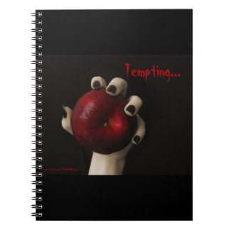 Brothers Grimm Tempting Witch Notebook
