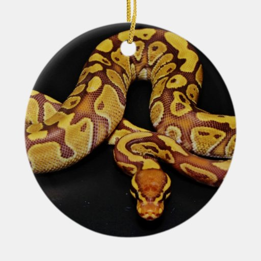 python christmas