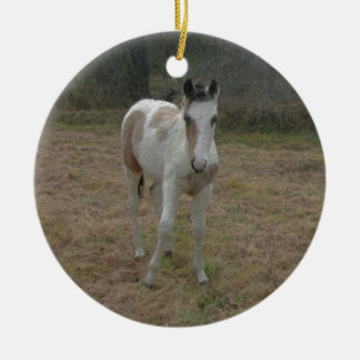 Brown and White Colt Round Ceramic Ornament