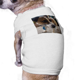 Brown_And_White_Fox_Terrier,_White_Ribbed_Pet_Coat Pet Tee