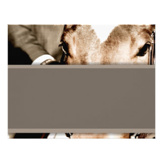 Brown and White Horse Letterhead Template