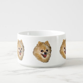 Brown and White Pomeranian Dog Bowl
