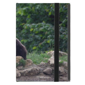 Brown bear case for iPad mini