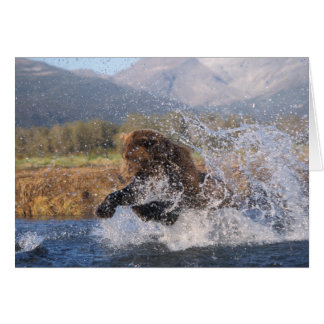 Brown bear, grizzly bear, catching pink salmon, card