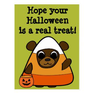 Brown Bear in Candy Corn Costume Postcard