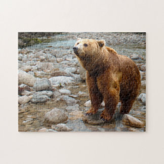Brown Bear in Stream Jigsaw Puzzle