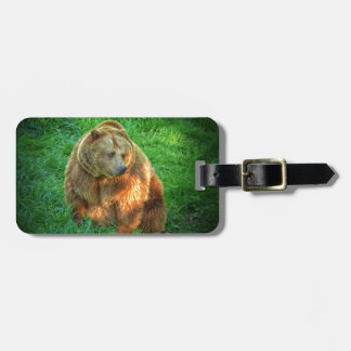 Brown bear in warm sunlight luggage tag