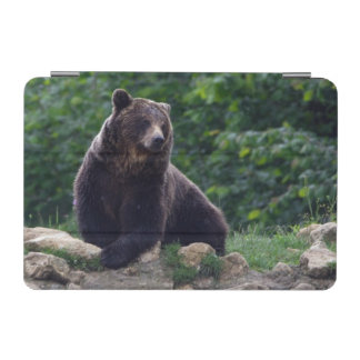Brown bear iPad mini cover