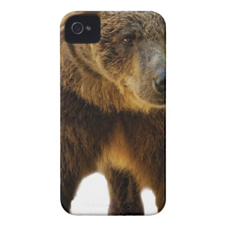 Brown Bear iPhone 4 Cover