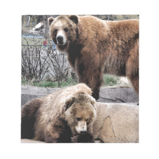 Brown bear notepad