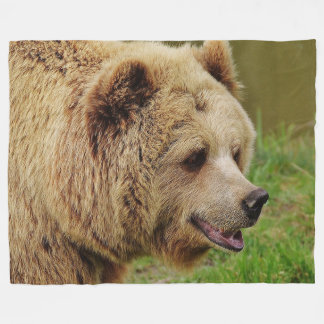 Brown Bear on Fleece Blanket