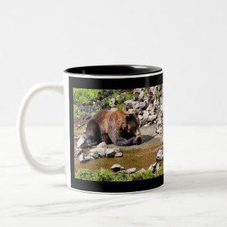 Brown Bear Photo Mug