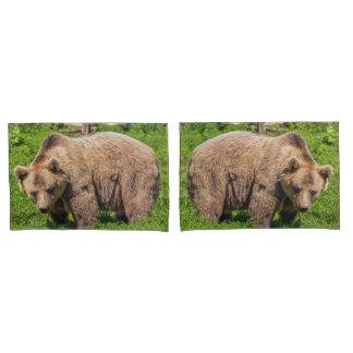 Brown bear pillowcase