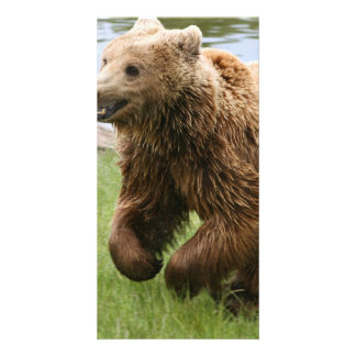 Brown Bear Running Personalized Photo Card