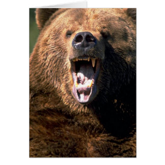 Brown Bear Showing Teeth Card