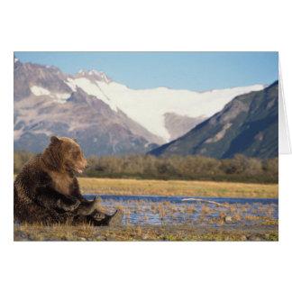brown bear, Ursus arctos, grizzly bear, Ursus 2 Greeting Card
