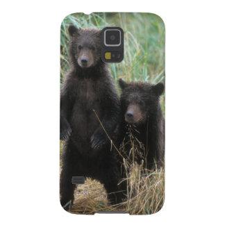 brown bear, Ursus arctos, grizzly bear, Ursus 7 2 Cases For Galaxy S5