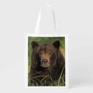 brown bear, Ursus arctos, grizzly bear, Ursus 9 Reusable Grocery Bag