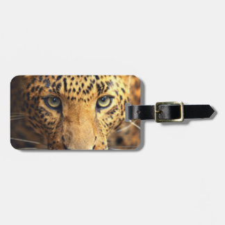 Brown Black Spotted Leopard Luggage Tag